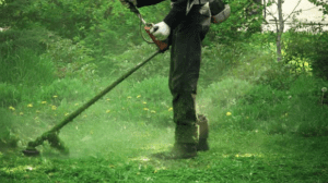 5 First Aid issues for Brushcutter / Strimmer Operators