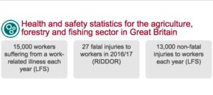 Forestry injury statisitics