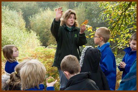 A Forest School leader with children in a woodland